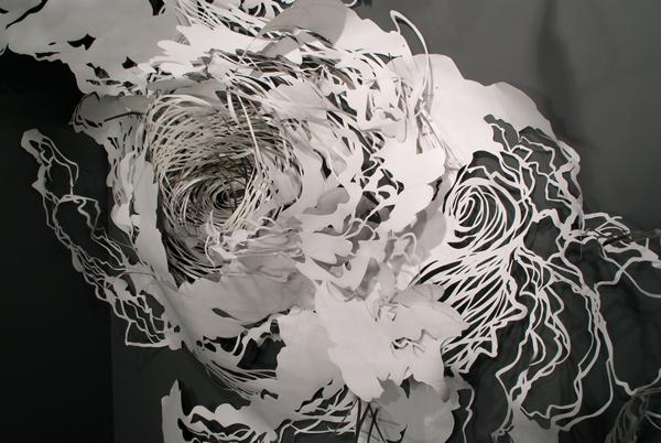 Pearlman - EDDY whorl horiz
