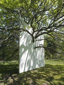 Letha Wilson arbre