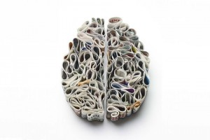 Kyle Bean - brain